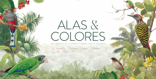 INICIA Libro Institucional Alas y Colores - Felipe Vicini