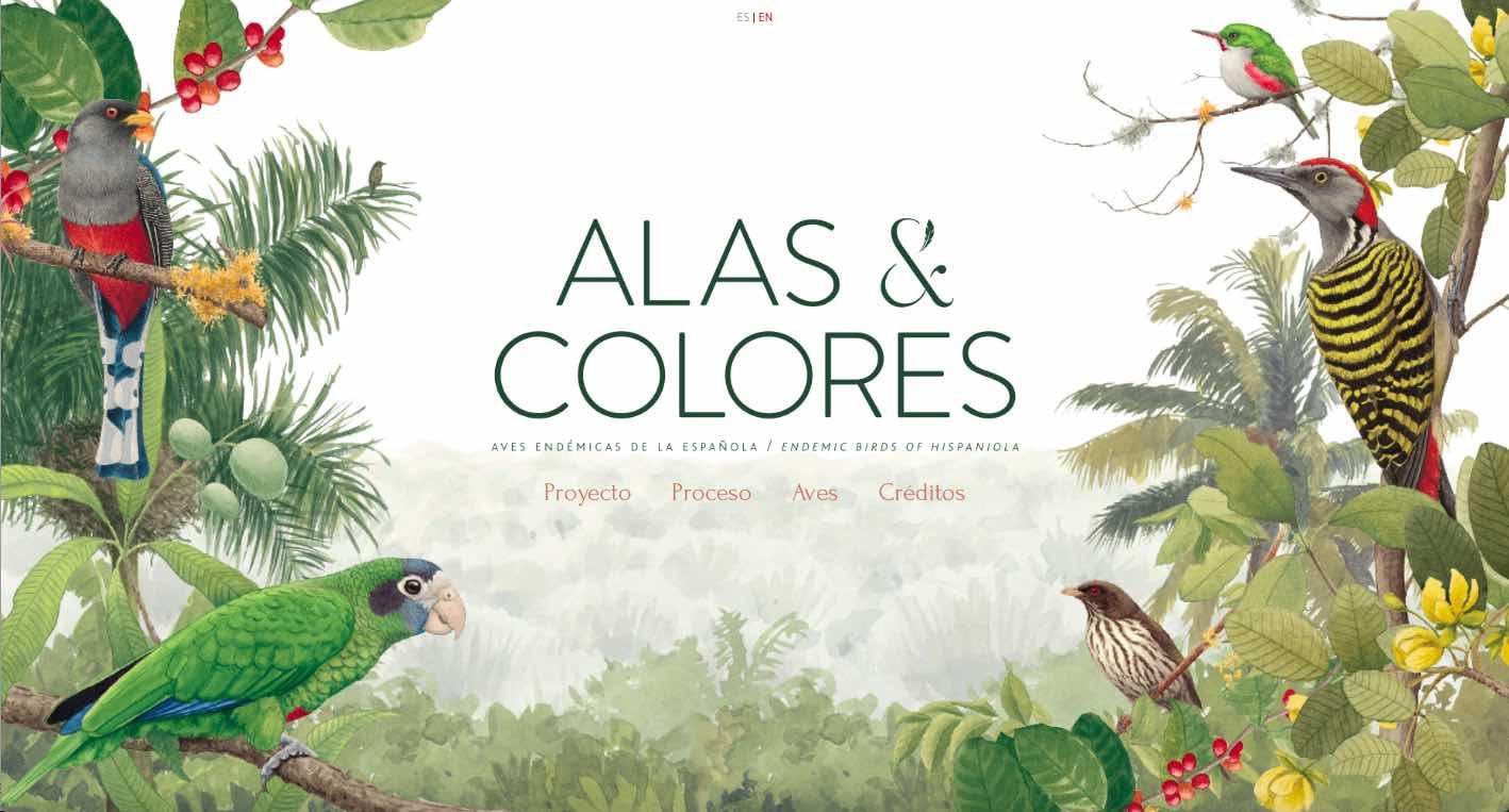 INICIA launches new Institutional Book: Alas & Colores - Felipe